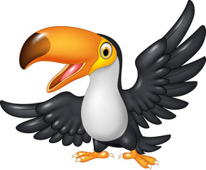 Cartoon funny toucan isolated on white background