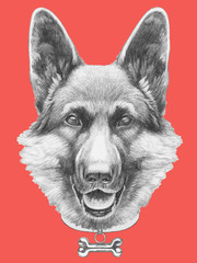 Portrait of German Shepherd with sunglasses. Hand drawn illustration.