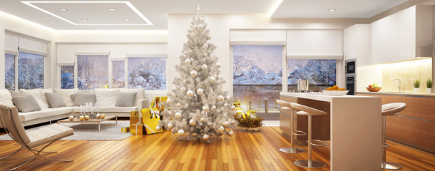 Christmas in a big house