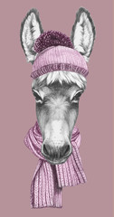 Portrait of Donkey with hat and scarf. Hand drawn illustration.