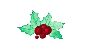 Christmas holly. Watercolor illustration.