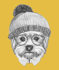 Portrait of Hipster Dog. Yorkshire Terrier with sunglasses and hat. Hand drawn illustration.