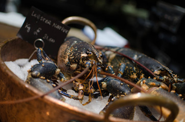 shellfish, london