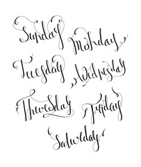 Handwritten days of the week: Monday, Tuesday, Wednesday, Thursday, Friday, Saturday, Sunday. Handdrawn calligraphy lettering for diary, banner, calendar, planner, poster. Isolated vector illustration