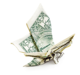 Dollar origami butterfly isolated side view