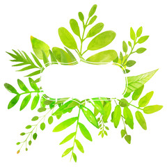 Summer frame with painted bright green leaves. Vector nature ill