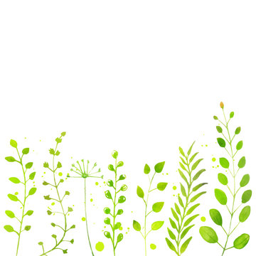 White spring background with hand painted watercolor green plant