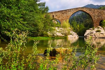 Medieval stone bridge over Llobregat river in  Pyrenees