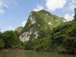 Tropical rain forest and river at Suratthani , Thailand background
