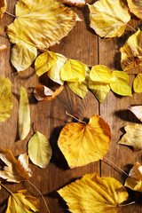 Background of yellow autumn leaves on wooden table, close-up