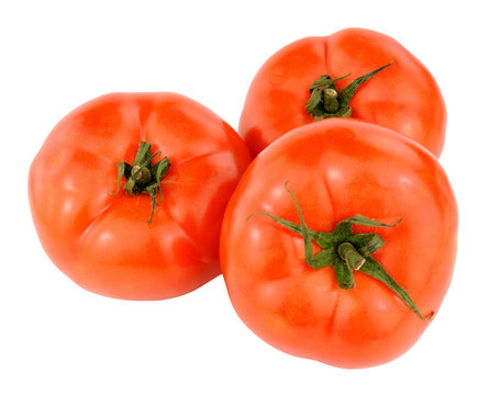 Large Fresh Beef Tomatoes
