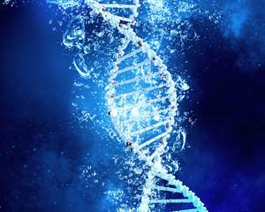 DNA molecule in water