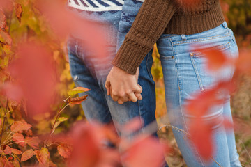 loving couple in a park on the outdoors