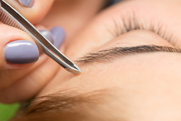 Grooming the eyebrows in a beauty salon