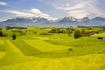 Wall Mural - Alpen Panorama in Bayern im Allgäu