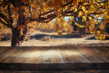 vintage wooden board table in front of meadow landscape with lens flare.