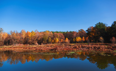 Autumn landscape with reflection in the river.