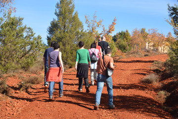 Foto op Aluminium Afrika grupo de ruta por el campo
