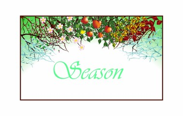 Four seasons.Apple tree,all year round.