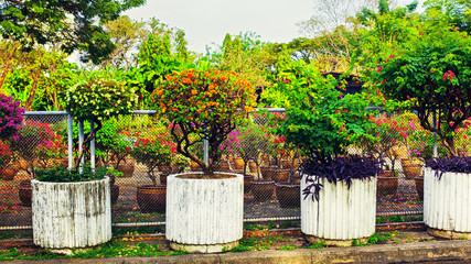 Beautiful Stone Flowerbeds