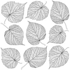 Wall Mural - contoured linden leaves