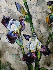 Oil painting still life with  blue violet  irises flowers On  Canvas with  texture in in the grayscale