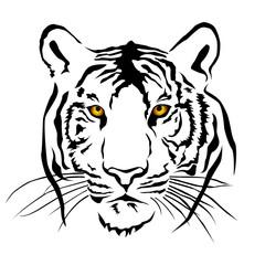 Tiger head Eye Color, Vector