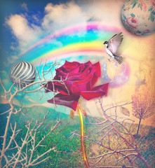 Canvas Prints Imagination Rainbow and red rose in the green valley