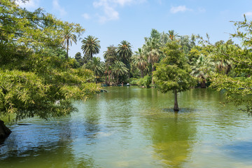 The Parc de la Ciutadella, established during the mid-19th century, situated in the heart of Barcelona, has a very beautiful garden landscape with a pond in the middle, where you can rent rowing boats