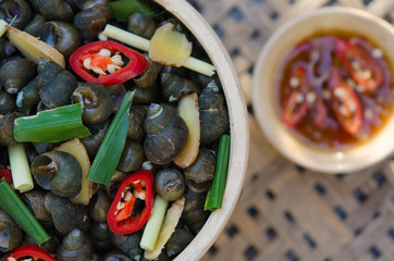 Snails is boiled by steam with ginger, chilli and citronella. Ab