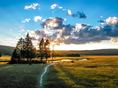 Yellowstone green plain