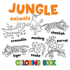 Set of funny jungle animals coloring book