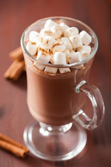 Foto op Canvas Chocolade hot chocolate with mini marshmallows cinnamon winter drink