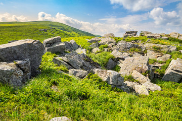 boulders on the mountain meadow