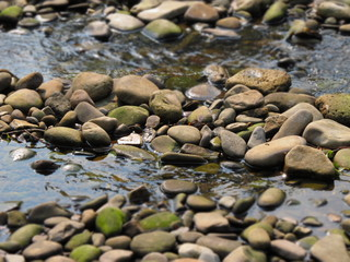 drying rover flowing between lines of stones with blurred background and foreground