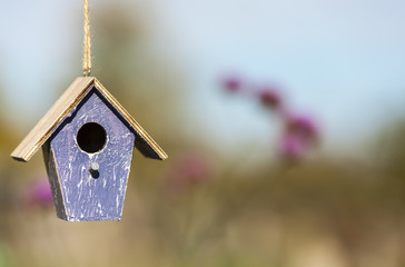 Wall Mural - Bird House in Sunshine with Country Flowers