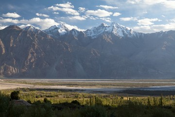 Wall Mural - View of Nubra Valley, Ladakh, Jammu and Kashmir, India