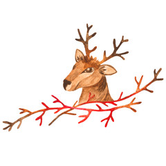 Watercolor Reindeer head and a branch