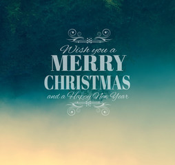 Merry Crhistmas Typography over a delicate nature backgroun