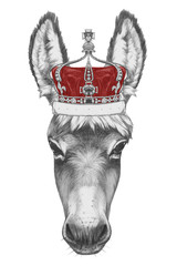 Portrait of Donkey with crown. Hand drawn illustration.