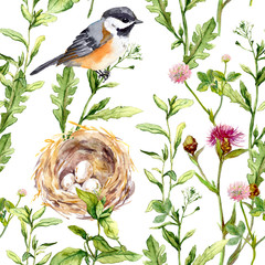 Pattern with herbs, bird and nest. Seamless watercolor