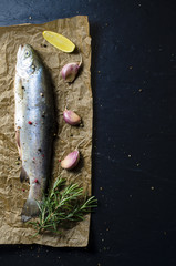 Raw trout fish with lemon, garlic, rosemary and pepper on dark background. Top view