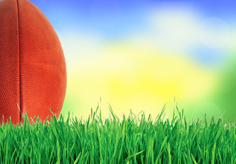 American football (rugby ball) on green grass over nature, close
