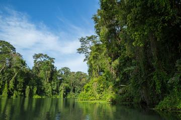 Flussfahrt im Dschungel in Costa Rica