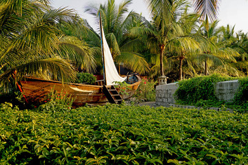 Boat with palm garden