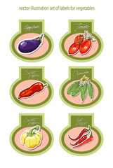 Set of vector labels with vegetables. Vector.