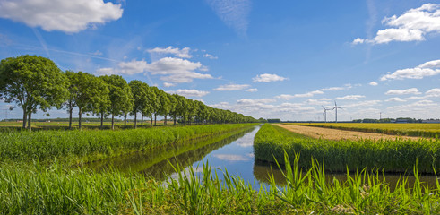 Canal through a rural landscape in spring