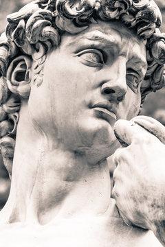 Michelangelo's David Portrait, Replica Statue in Florence Italy