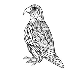 Zentangle vector Falcon, bird hawk of prey, predatory for adult