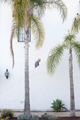 Man walking up a staircase in the distance, palm trees.